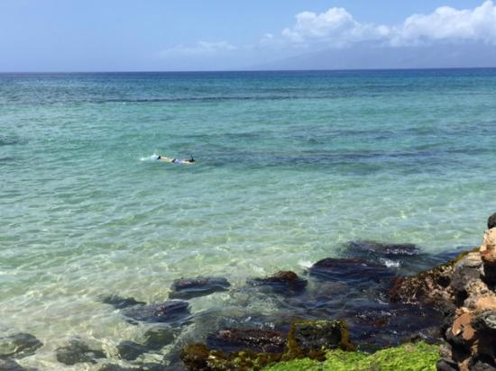 Kaleialoha Condominiums: Water right off the property. Turtles would swim right on by every day.