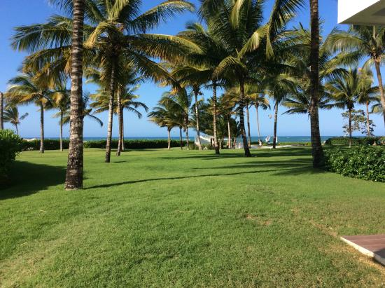 LG Surf Camp: Garden next to the Beach of Cabarete