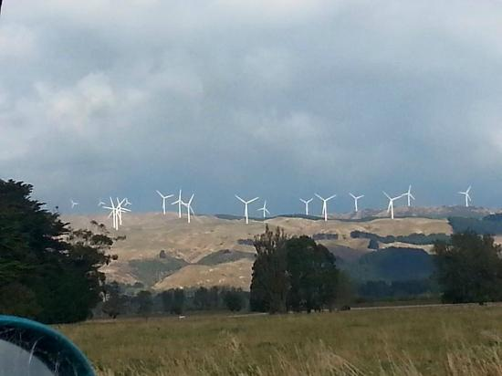 Woodville, New Zealand: Te Apiti Windfarm 3