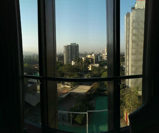 Decent view