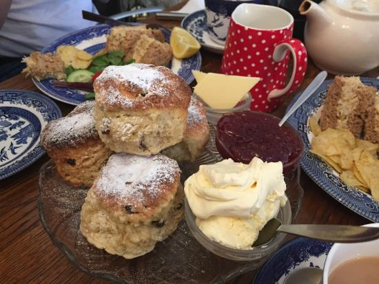 The Captains Cottage: Delicious scones with clotted cream and jam