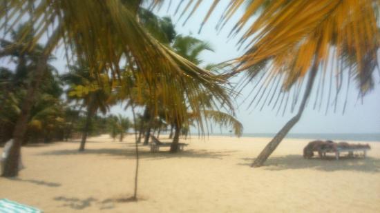 Abad Turtle Beach Resort Marari Kulam