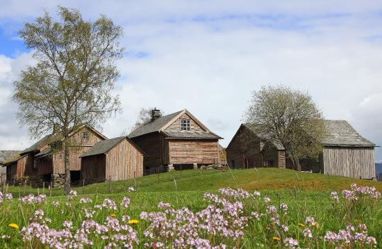 Voss Municipality, Norway: Welcome to visit the farmstead Mølstertunet with buildings from the 1500s