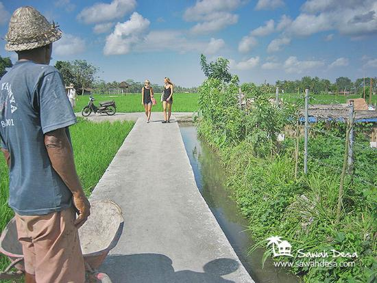 Sawah Desa - Day Tours