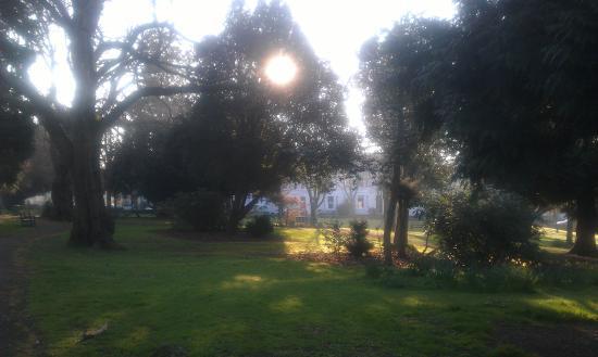 Thorn Park: Easter sunday morning