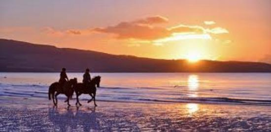 Ayr India: Stunning Sunsets!
