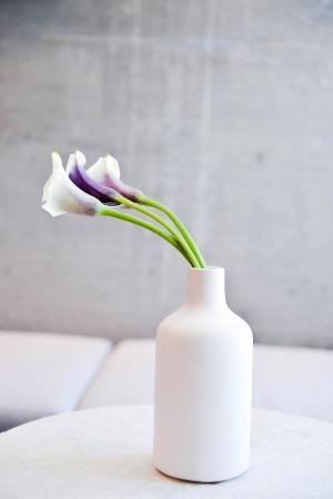 ماين آند سكاي: Beautiful Flowers in the Lobby