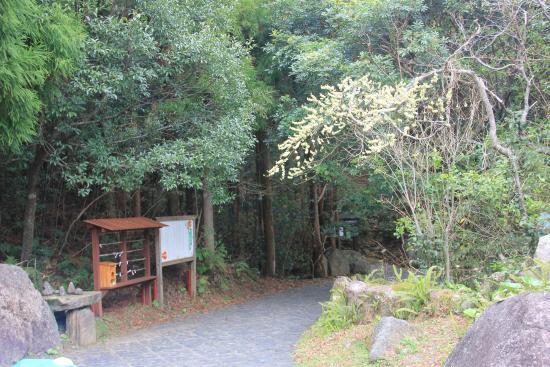 Senhiro Waterfall: Pathway to Senhiro fall