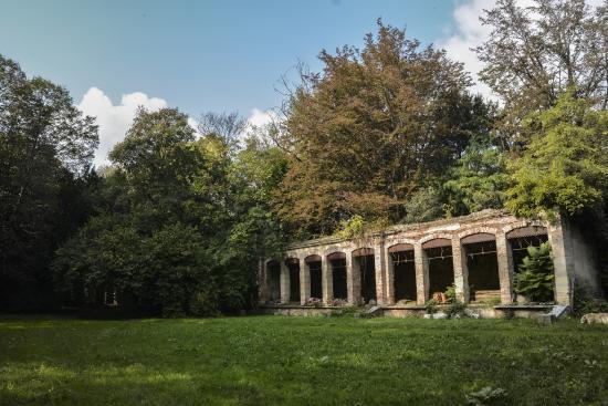 b b giardino jappelli rosa italia prezzi 2018 e recensioni