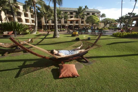 Courtyard Kaua I At Coconut Beach Hubs In The Hammock