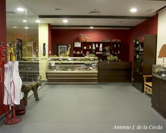 Museo del Jamon: TIENDA MUSEO DEL JAMÓN DE ARACENA