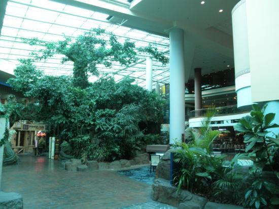 Travelodge Hotel Bankstown Sydney: Lobby area