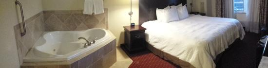 Hampton Inn & Suites Washington-Dulles International Airport: Very clean and spacious room!