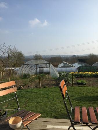 Beals Barn Gardens