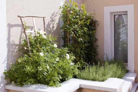 La Ferme des Barmonts: Vu jardin