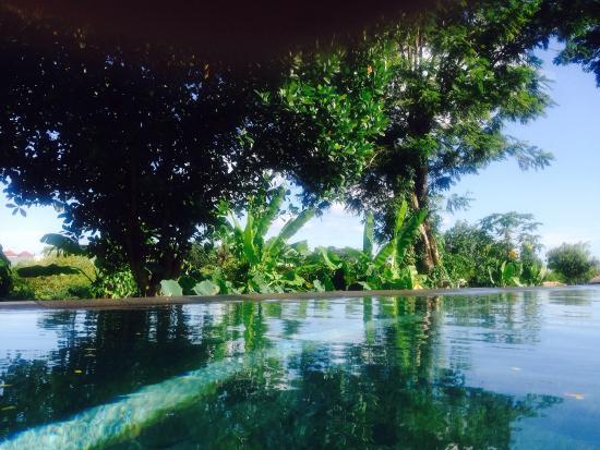 Villa Mimpi Manis Bali: Pool 💙