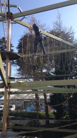 Kidzworld: High ropes!