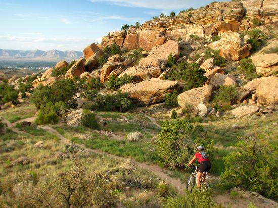 Grand Junction, CO: World-class mountain biking
