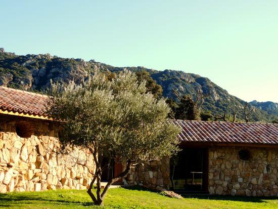 Pozzo di Mastri: Les chambres avec vue sur le parc et la piscine
