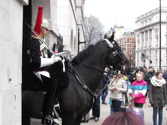 Royal Sean the Sheep - Picture of Buckingham Palace ...  Royal Sean the ...