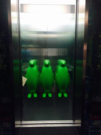 Penguins... In the elevator! - Picture of 21c Museum Hotel ...