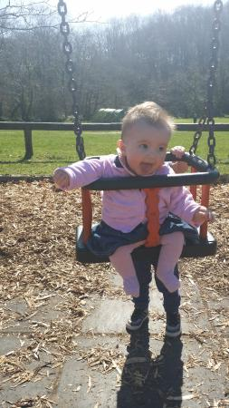 Riverside Camping: playing  on the  swings