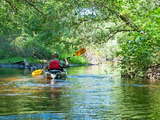 South County, RI: Kayaking at Frying Pan Pond, Photographer: John Woodmansee