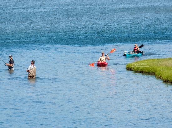 South County, RI: Kayaking at Narrow River, Photographer: John Woodmansee