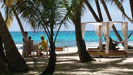 Playa Tao Beach Club & Restaurant: Pranzo in paradiso