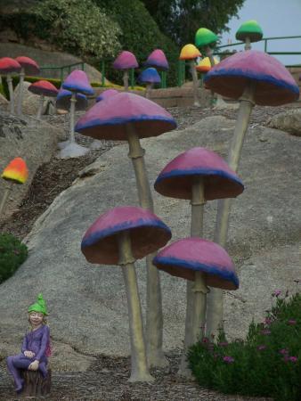 Anakie FP - Gardens