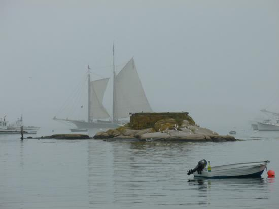Penny's B & B: Sails in the fog