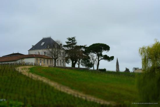 Chateau Tournefeuille: View of the Chateau and the sloping vineyards