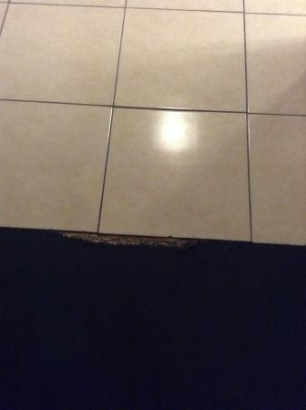 Mesa Travelodge: Hole in carpet