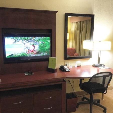 DoubleTree By Hilton Hotel Fayetteville: TV and work space