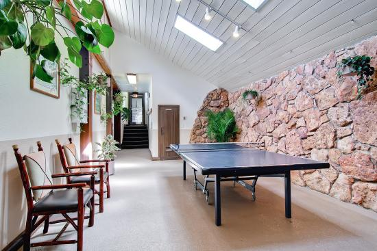 Falcon Point Resort: Clubhouse ping pong