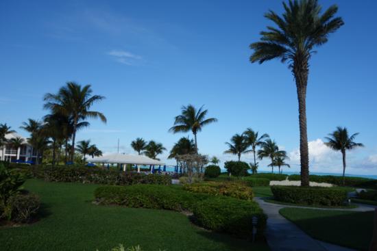Bahama Beach Club : территория