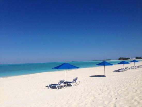 Bahama Beach Club : пляж