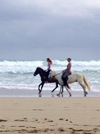 Hideaway Beach Resort張圖片