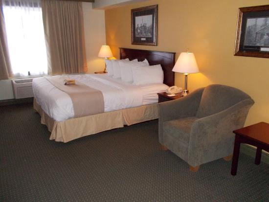 Quality Inn & Suites: Our Room on check in