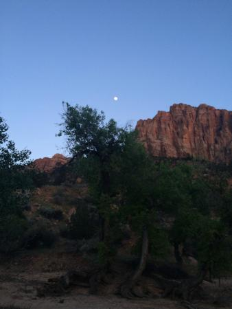 Zion Canyon Campground: gorgeous surroundings; taken from campground