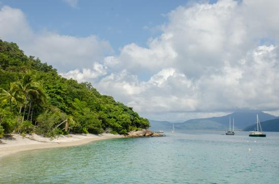 Fitzroy Island National Park: Beach at Fitzroy Island