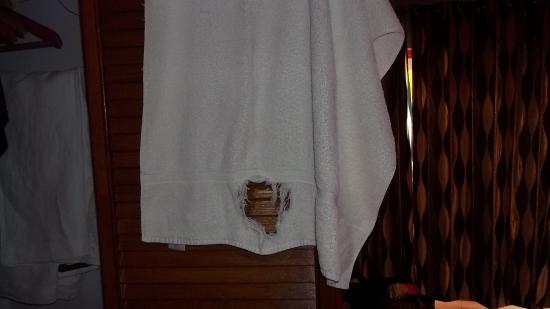 أوشنز ساليبيا نيتشر ريزورت: Thanks for the towel!  I could not asked for anything more.