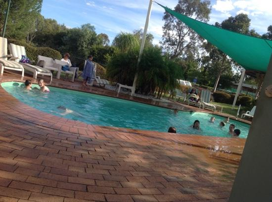 in the heated pool picture of discovery parks dubbo. Black Bedroom Furniture Sets. Home Design Ideas