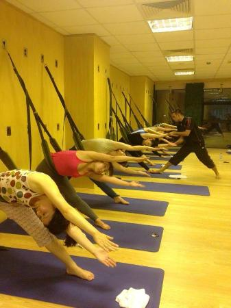 Studio Five Yoga & Wellness