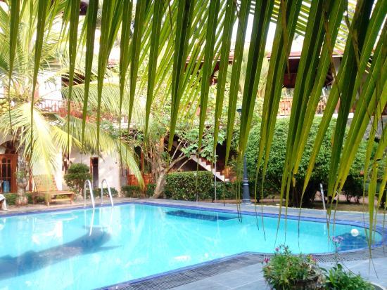 Hotel Bentota Village: Sonnenliege unter Palmen