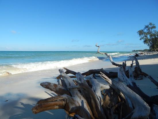 Kinondo Poa: At the beach