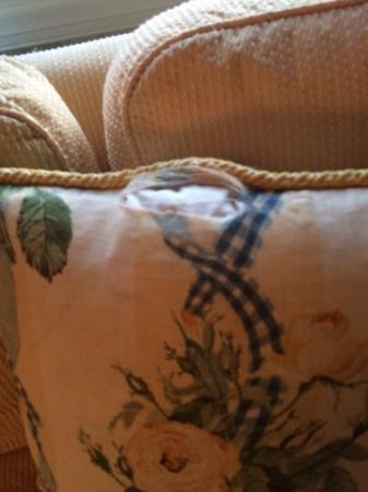 Torn pillows in room
