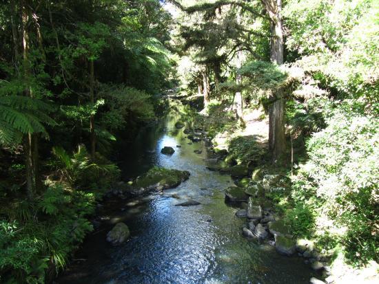 Whangarei, New Zealand: aval des chutes