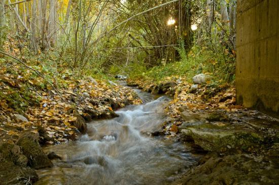 Complejo Rural el Molinillo: Río cercano