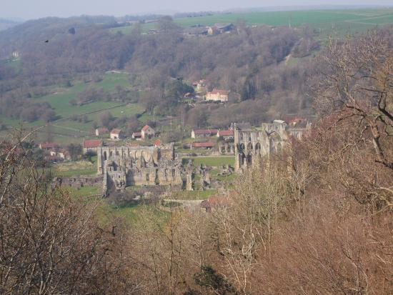 Rievaulx Terrace and Temples : View of the abbey